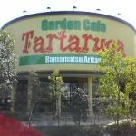 美味しい生パスタの店:Tartaruga(タルタルーガ)